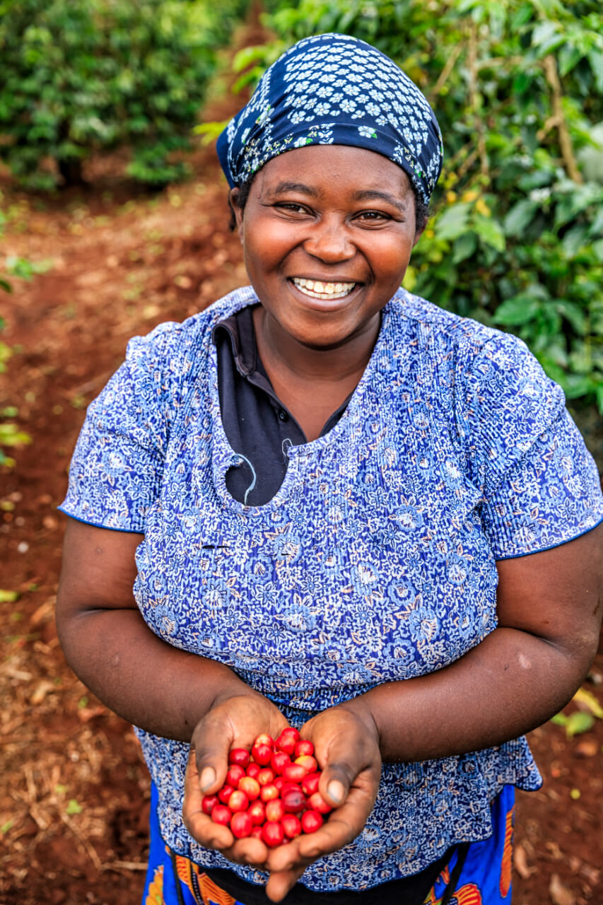 Young African woman showing freshly picked coffee cherries, East Africa.jpg